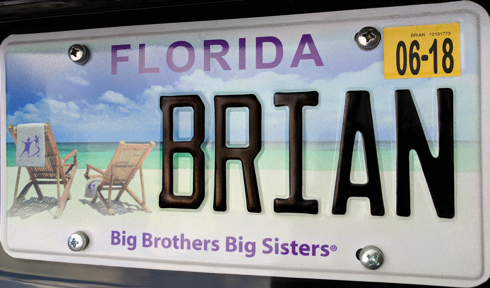 Florida Big Brothers Big Sisters license plate