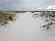 Gulf of Mexico beach critical wildlife area