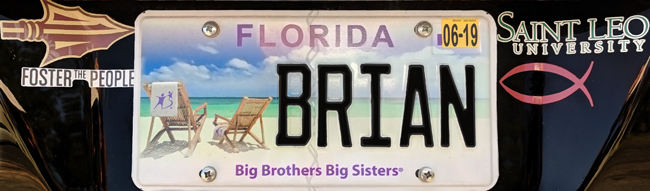 Florida Big Brothers Big Sisters license plate