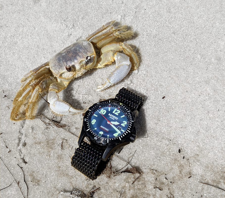 Bathys Benthic automatic watch black mother of pearl