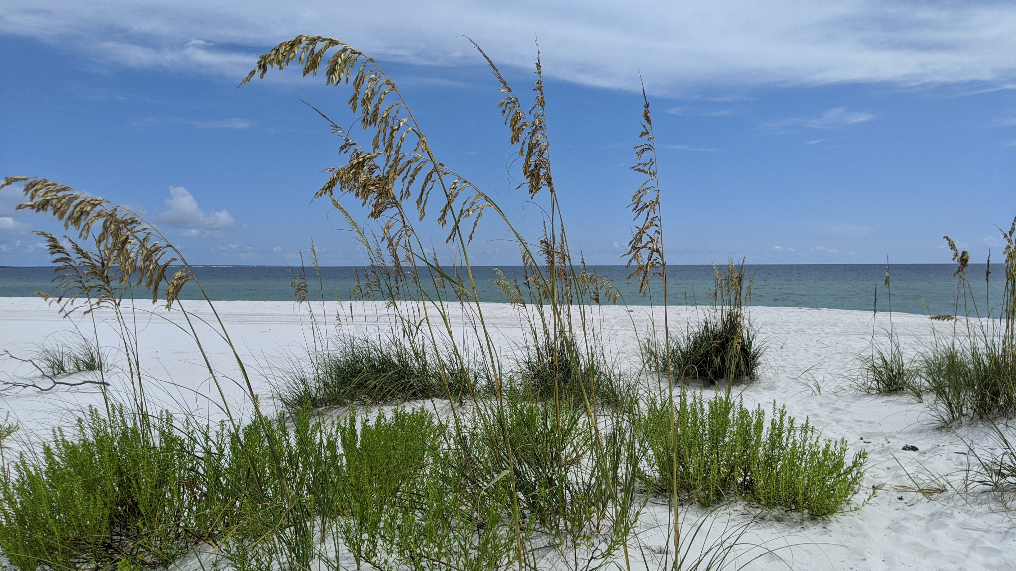 Crooked Island beach in Bay County